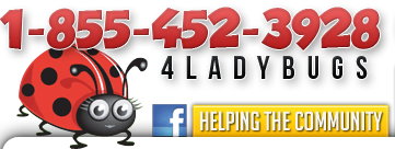 1 855 452 3928 - Lady Bugs Enviromental Termite and Pest Control